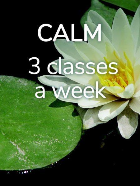 Calm Yoga Class pass