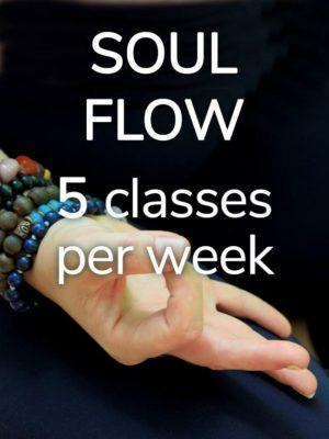 Soul Flow class passes